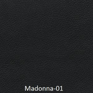Madonna-01