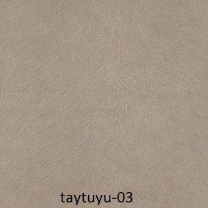 taytuyu-03