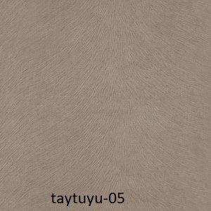 taytuyu-05