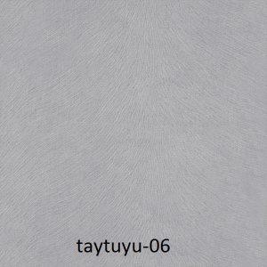taytuyu-06