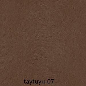 taytuyu-07