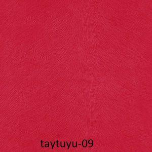 taytuyu-09