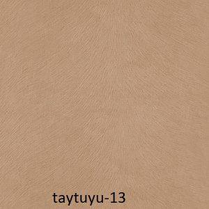 taytuyu-13