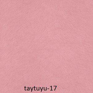 taytuyu-17