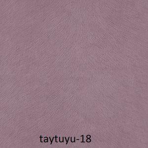 taytuyu-18