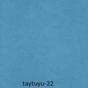 taytuyu-22