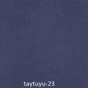 taytuyu-23