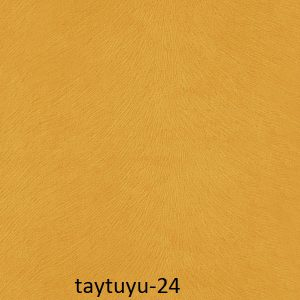taytuyu-24